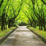 18/8/2 光岡眞里の「あゆみ」メールマガジン【親切とオキシトシン】